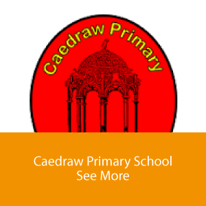 Caedraw Primary rollover